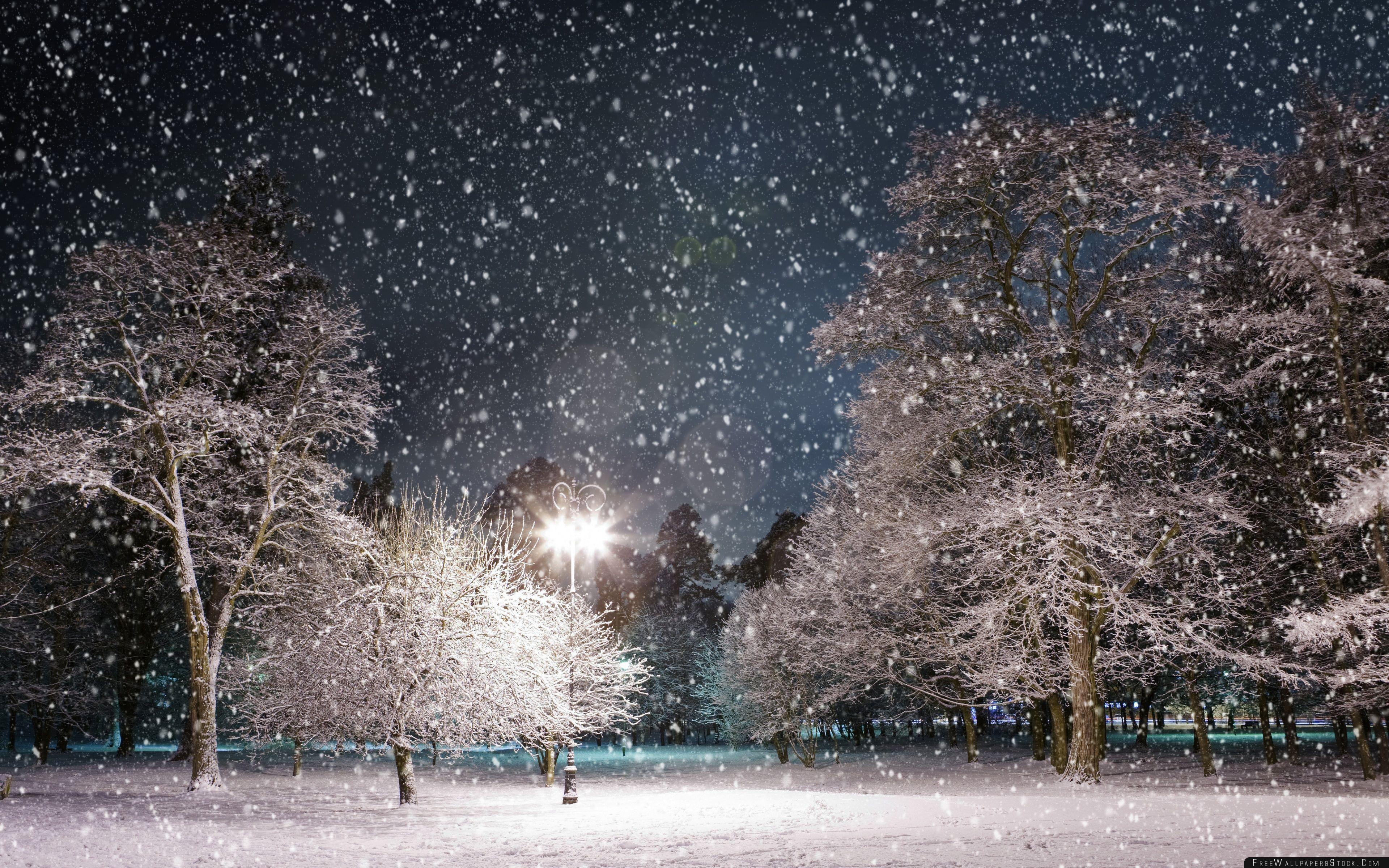 Download Free Wallpaper Winter Night