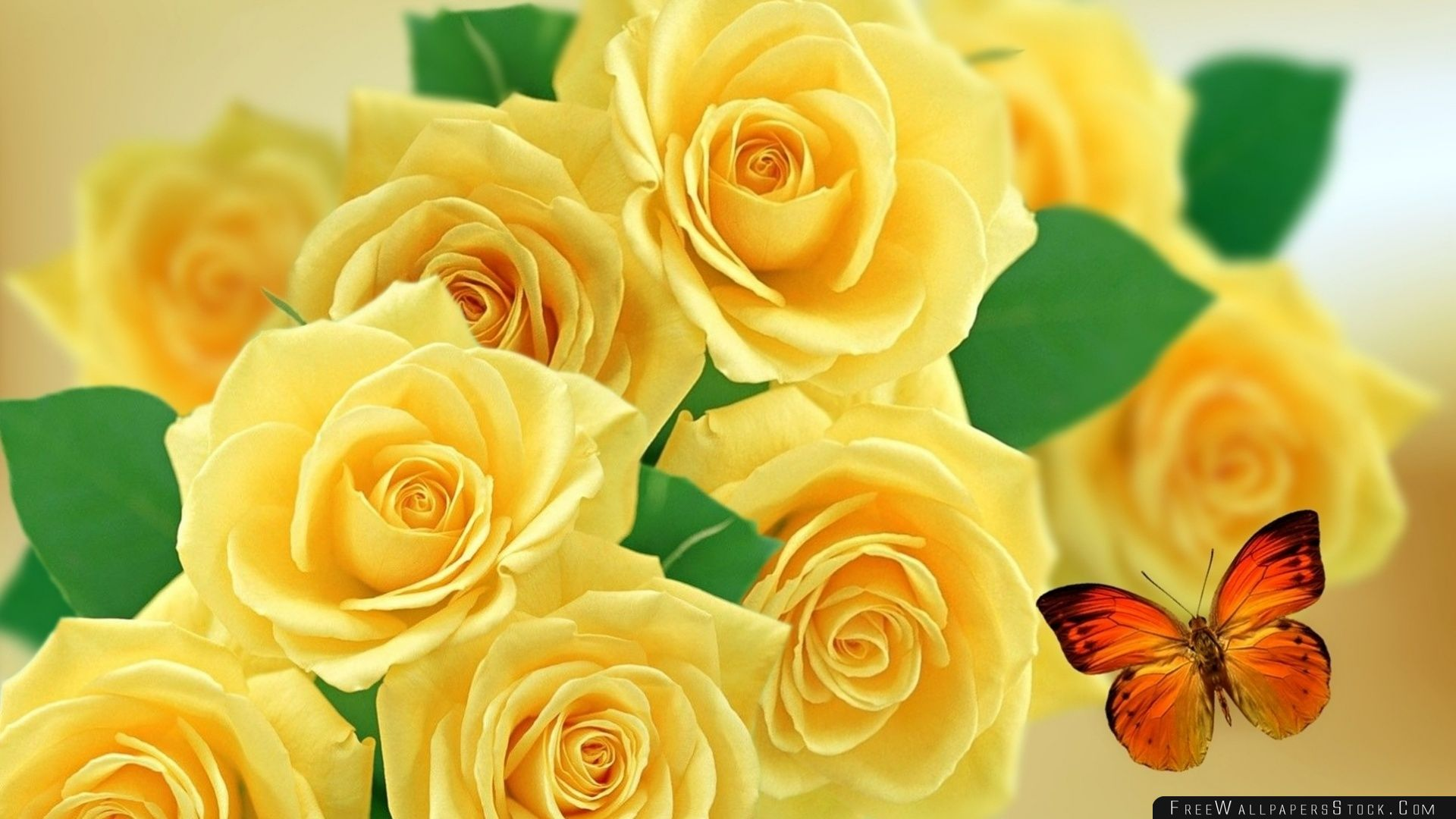 Download Free Wallpaper Yellow Roses And Butterflies