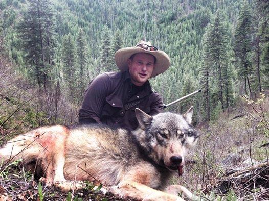 Cameron Outfitters Wolf Hunt