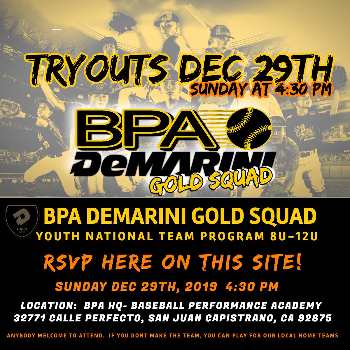 BPA Gold Squad- Web