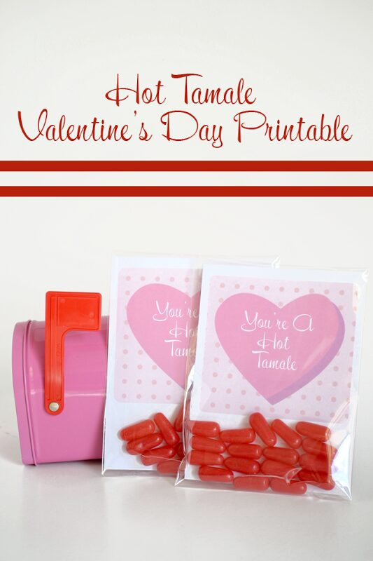 You're A Hot Tamale Valentine's Day Printable