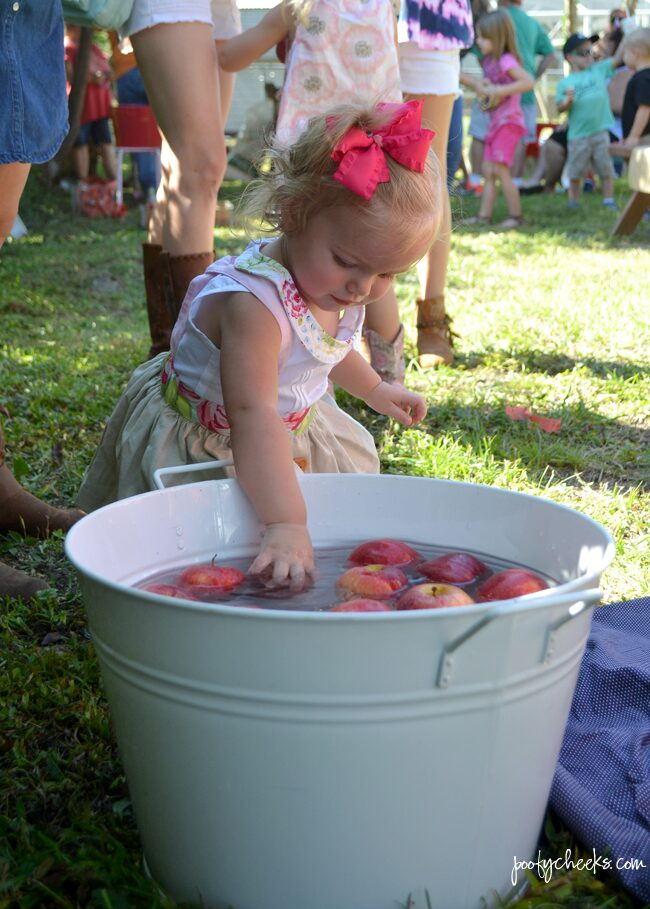 Great backyard County Fair birthday party. Lots of great pictures and ideas.