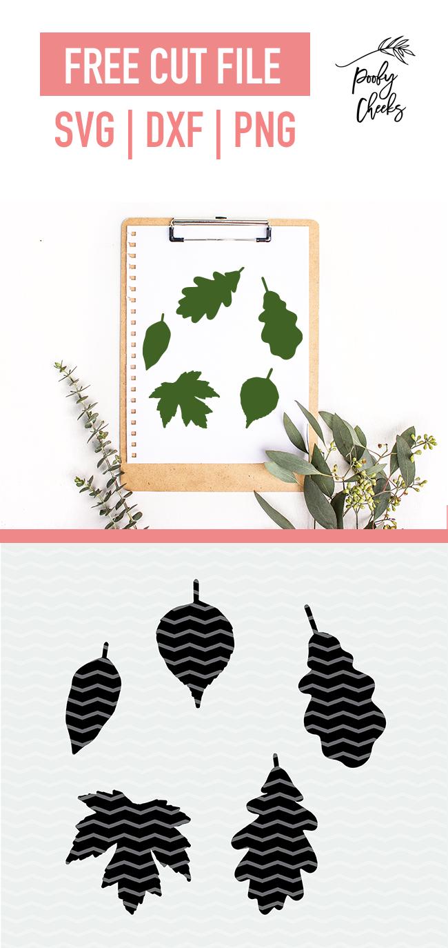 Fall leaves digital design