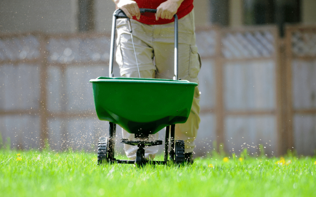 Tips for a Better Lawn