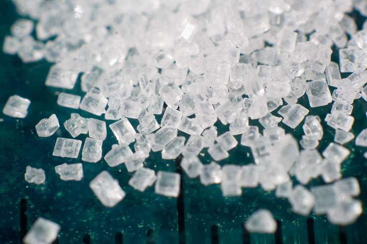 a high sugar diet promotes the growth of harmful bacteria