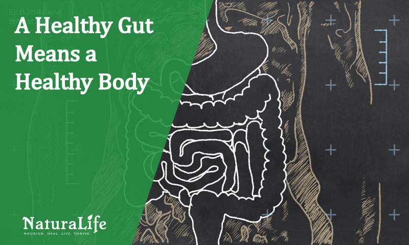 how to naturally heal your gut