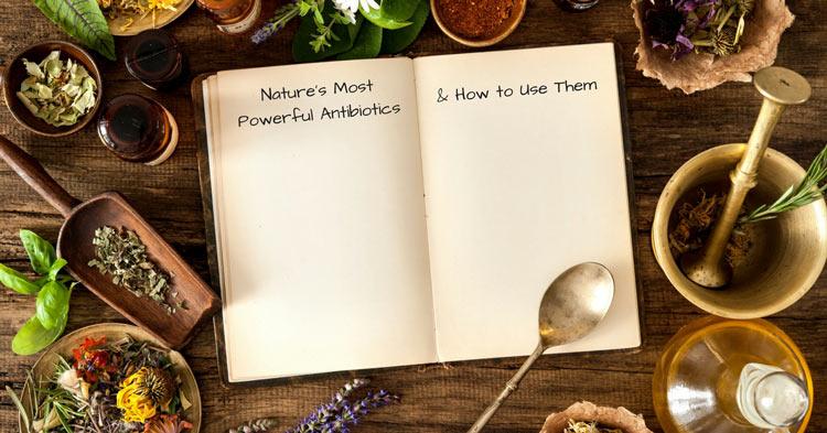 Nature's most powerful natural antibiotics