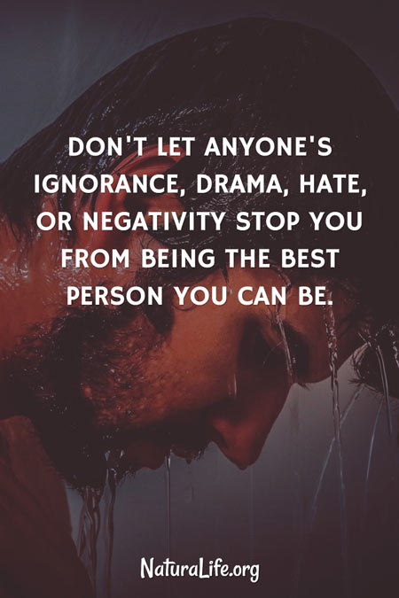 Quote: Don't let anyone's ignorance, drama, hate or negativity stop you from ebing the best person you can be.