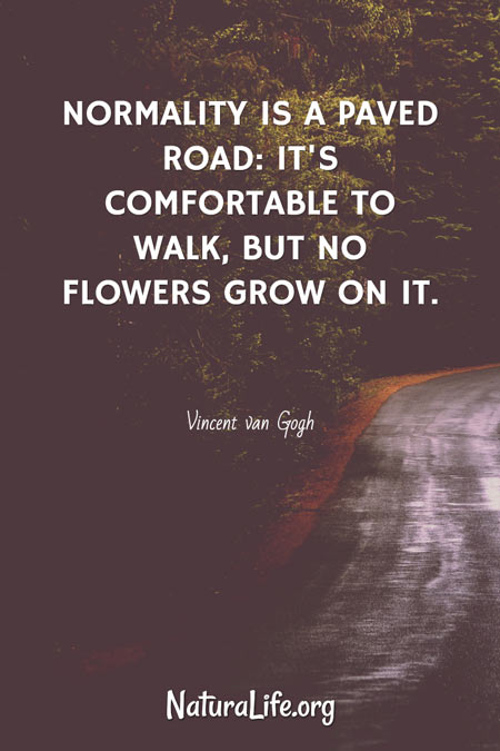 Normality is a Paved Road: It's Comfortable to Walk, But No Flowers Grow On it. Vincent van Gogh quote.