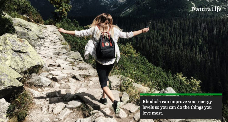 rhodiola rosea can give you more energy