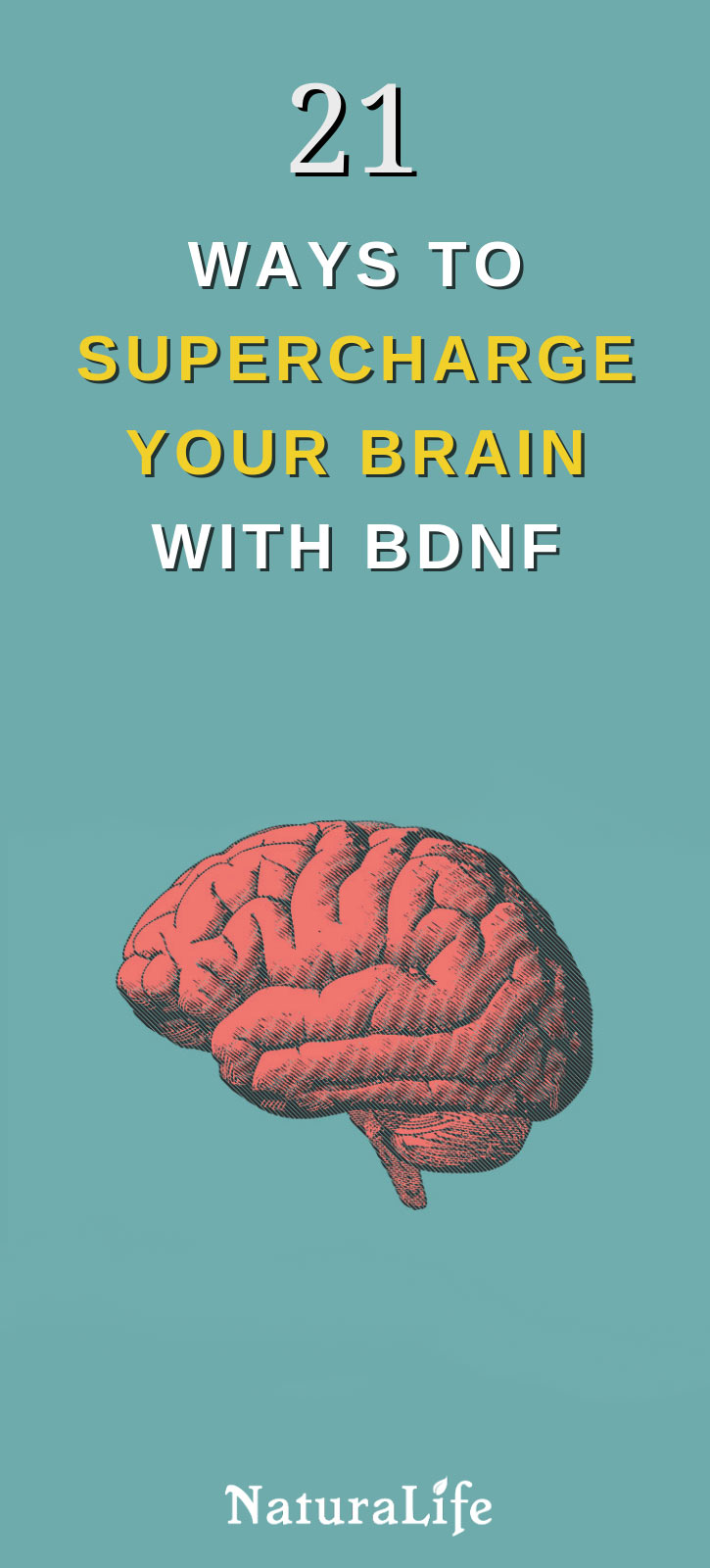 21 Ways to Increase BDNF for a Supercharged Brain