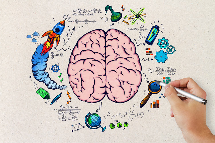 BDNF optimized brain with colorful doodles