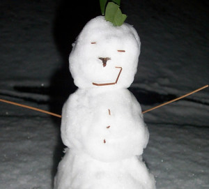 6-Inch Snowman. Decorated with pine needles and oak leaf.