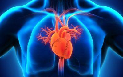 Congestive Heart Failure Same Day Clinic