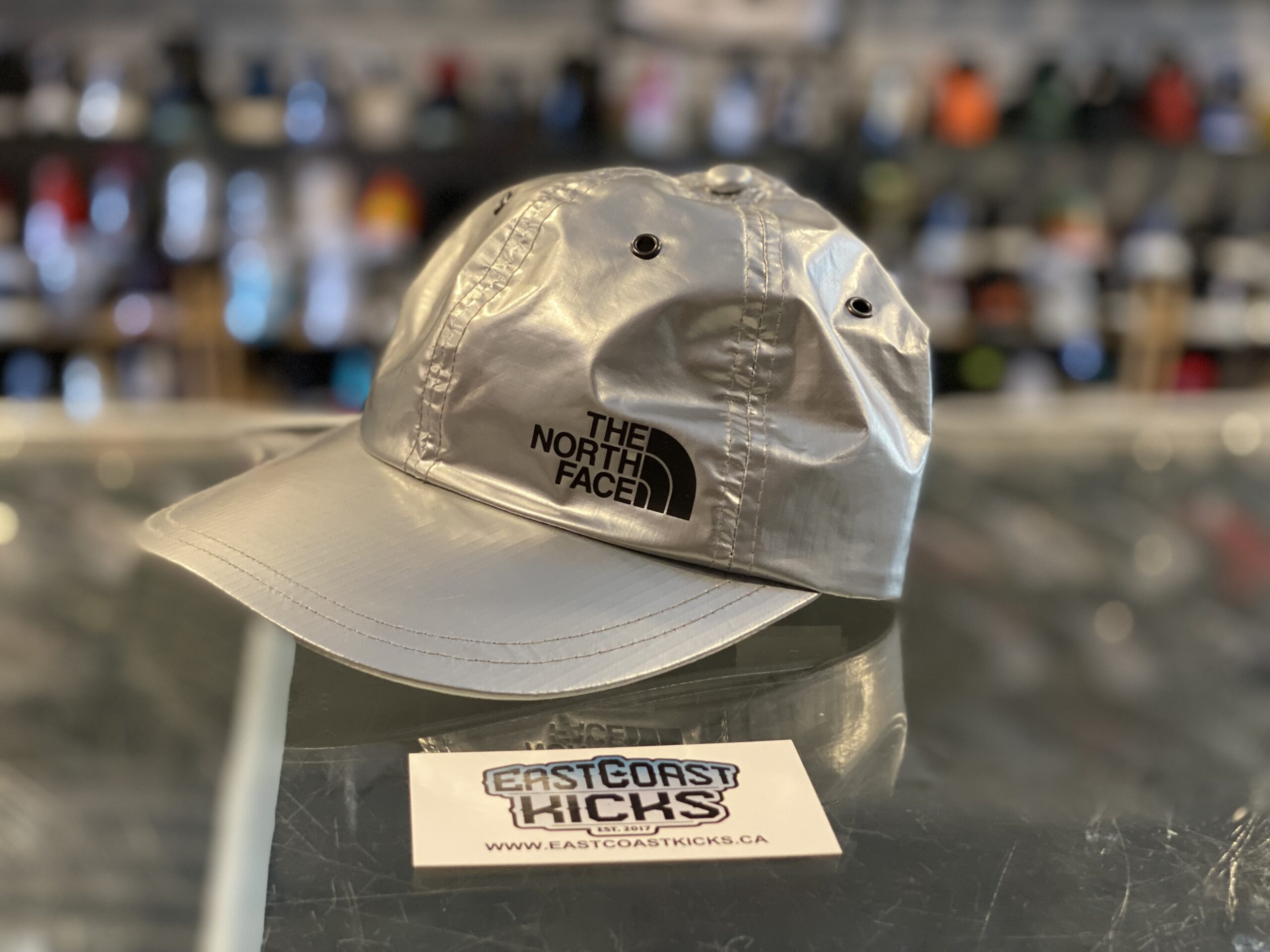 Supreme The North Face 6 Panel Hat Silver