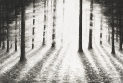 Raquel Maulwurf, Into the trees III, 2016, courtesy the artist and Livingstone Gallery, Amsterdam