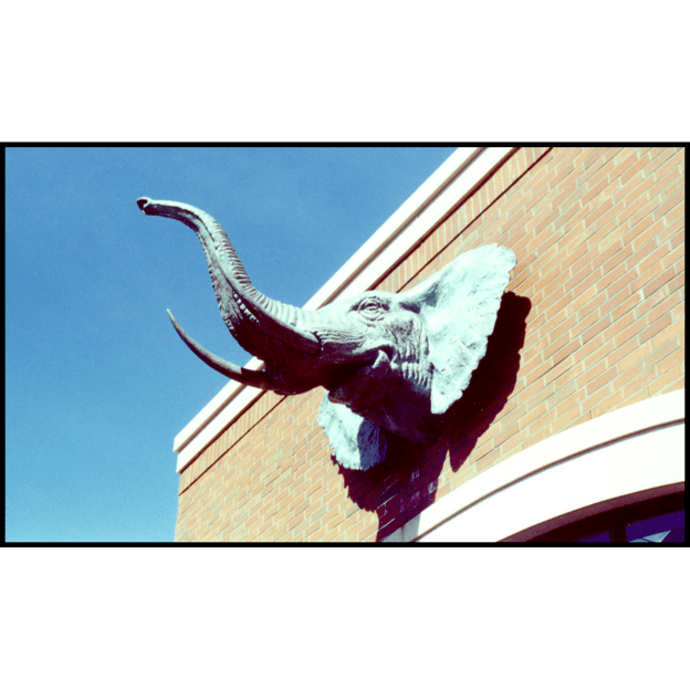 photo of green-colored bronze sculpture of an elephant head on a brick building