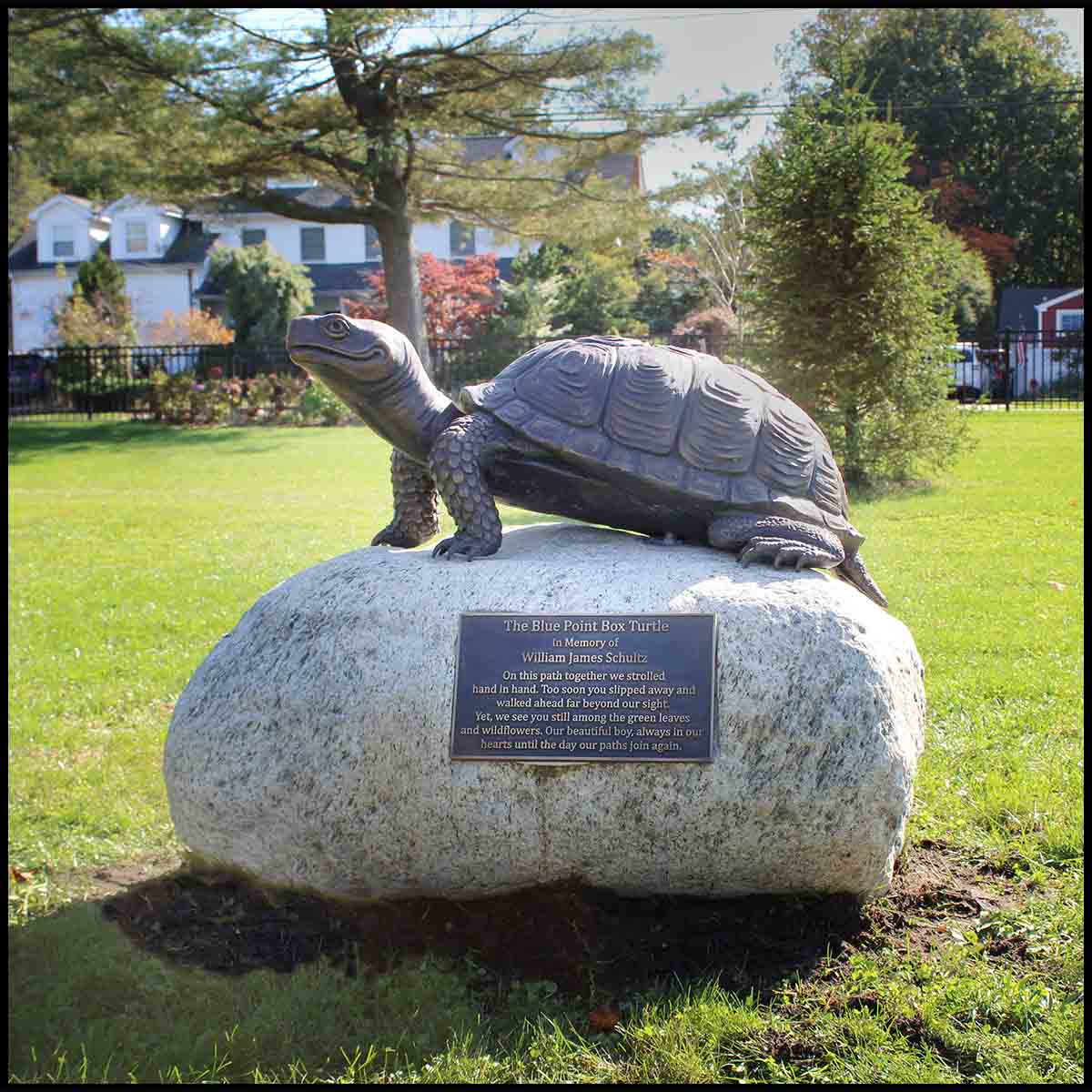 photo of bronze-colored sculpture of turtle with head raised on rock with bronze-colored plaque in park setting