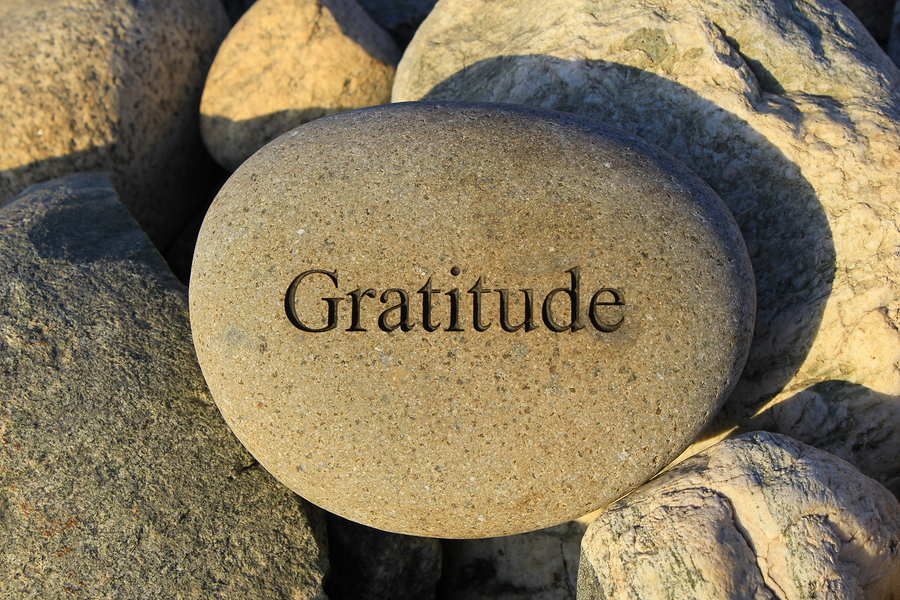 Project Share Day 34: Gratitude