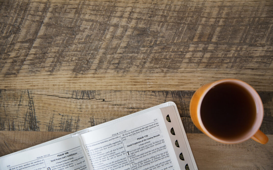 Fall Bible Studies & Classes