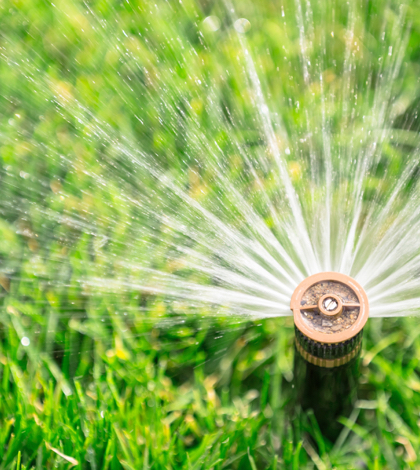 California Water Conservation Efforts