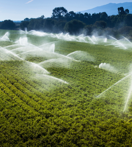 Wastewater to irrigate food crops in California