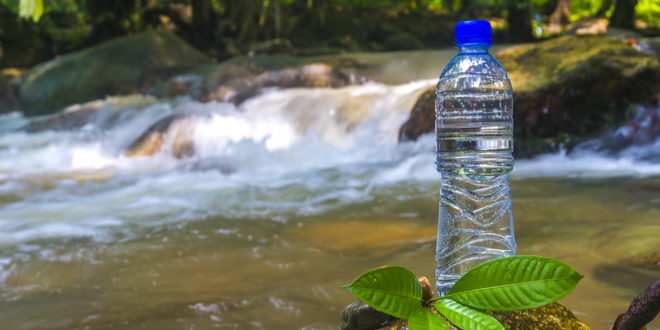 Nestle told to stop water diversions in San Bernardino National Forest