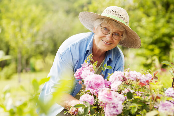 What is Home Care Assistance?