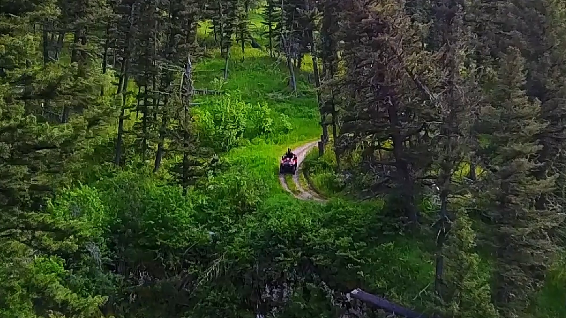 ATVing through the woods