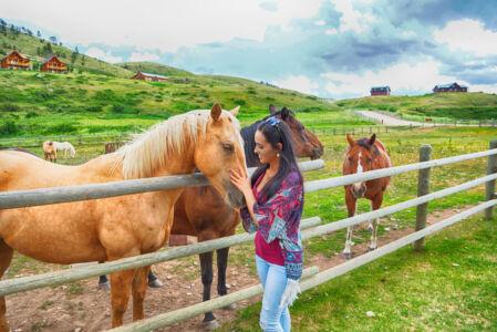 Summer Horseback Rides