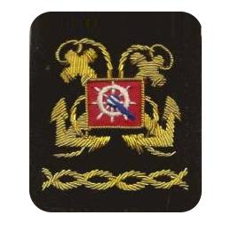 Sleeve Emblem, District Secretary/Treasurer