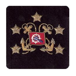 Sleeve Emblem, International President Elect