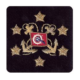 Sleeve Emblem, International President Navy or White