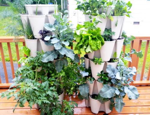 2 Five Tier GreenStalk Vertical Gardens