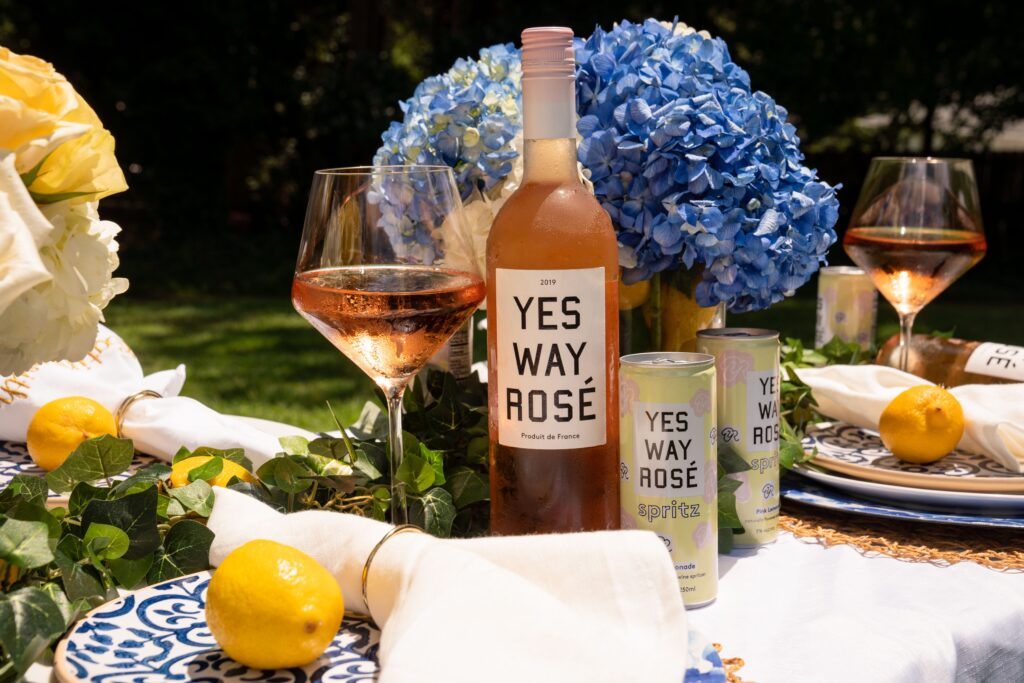 Eating-with-erica-foodie-Atlanta-food-blogger-atlanta-instagrammer-atlanta-food-instagram-erica-key-yes-way-rosé-cans-yes-way-rosé-bubbles-yes-way-rosé-review-yes-way-rosé-calories-yes-way-rosé-alcohol-content-yes-way-rosé-owner-yes-way-rosé-price-yes-way-rosé-shirt-national-lemonade-day-Erica-Blumenthal-And-Nikki-Huganir-Creators-Of-Yes-Way-Rosé-Target-two-best-friends-in-New-York-City-fox5