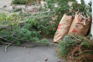 Garden Waste Removal Winchester, KY
