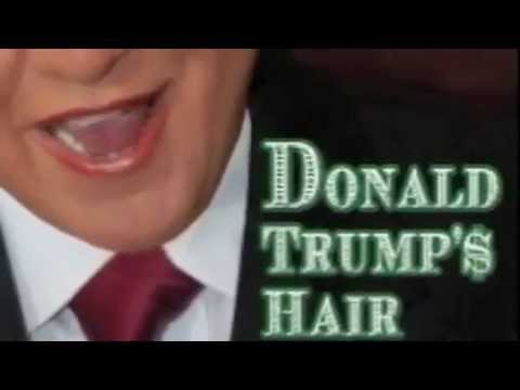 Donald Trumps Hair