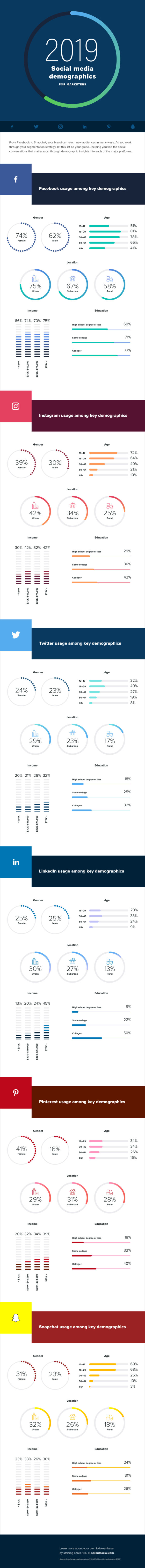 2019 Social Media Network Demographics Infographic