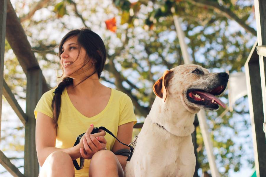 You are currently viewing Best Pets For Travelers For Travelling Who Love Travel A Lot