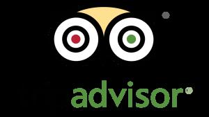 TripAdvisor Logo Best Tour Place