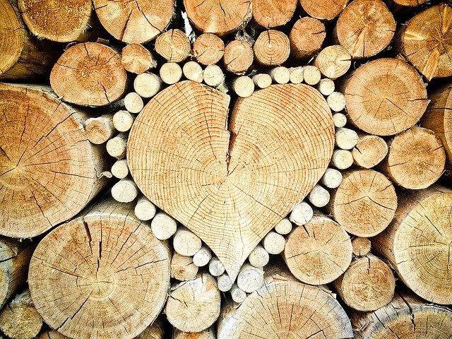 firewood Best Tour Place