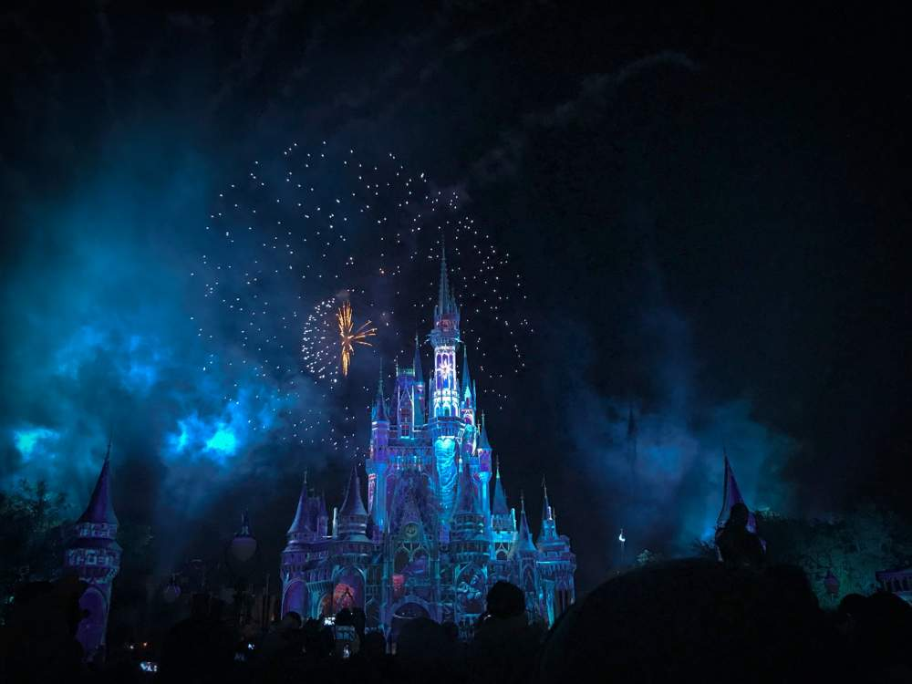 Important Tips You Need To Know While Planning Your Disney World Honeymoon
