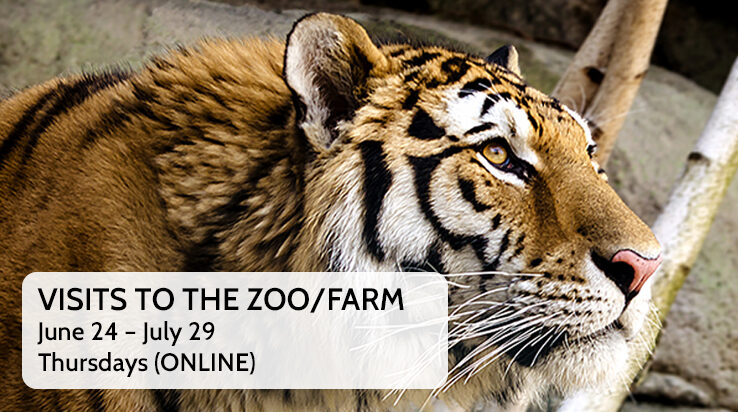 Visits to the Farm and Zoo Videos (ONLINE)