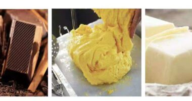 Artificial fat company Yali Bio - food tech news in Asia