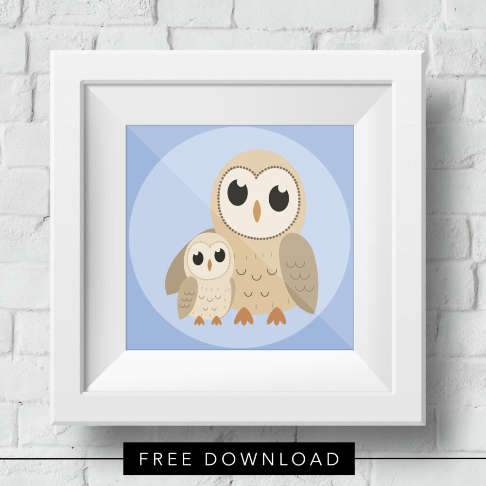 baby-owl-free-download