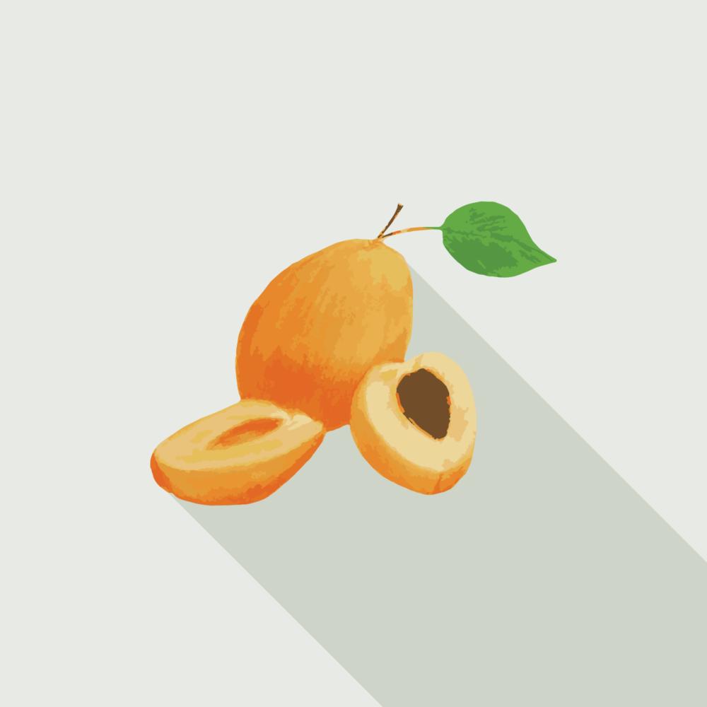 jason-b-graham-apricot-icon-0001-featured-image