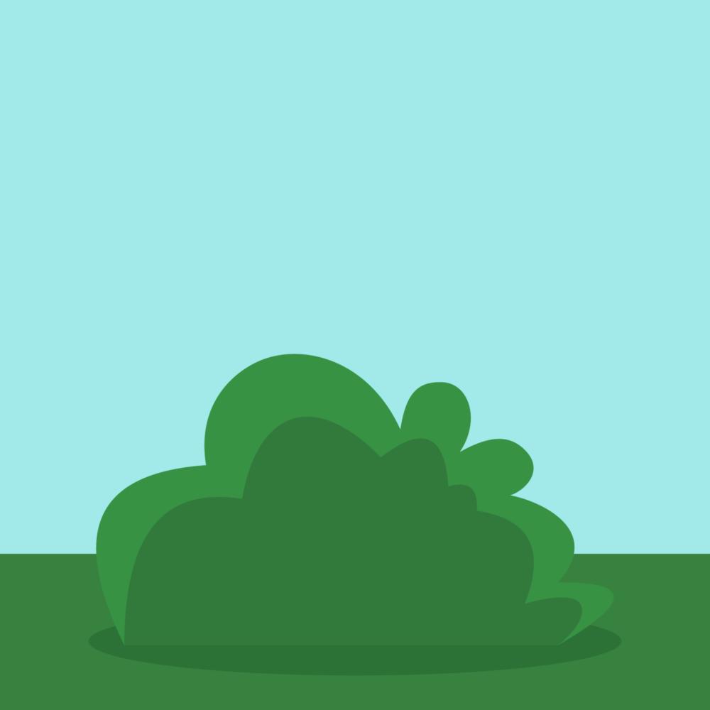 bush-featured-image