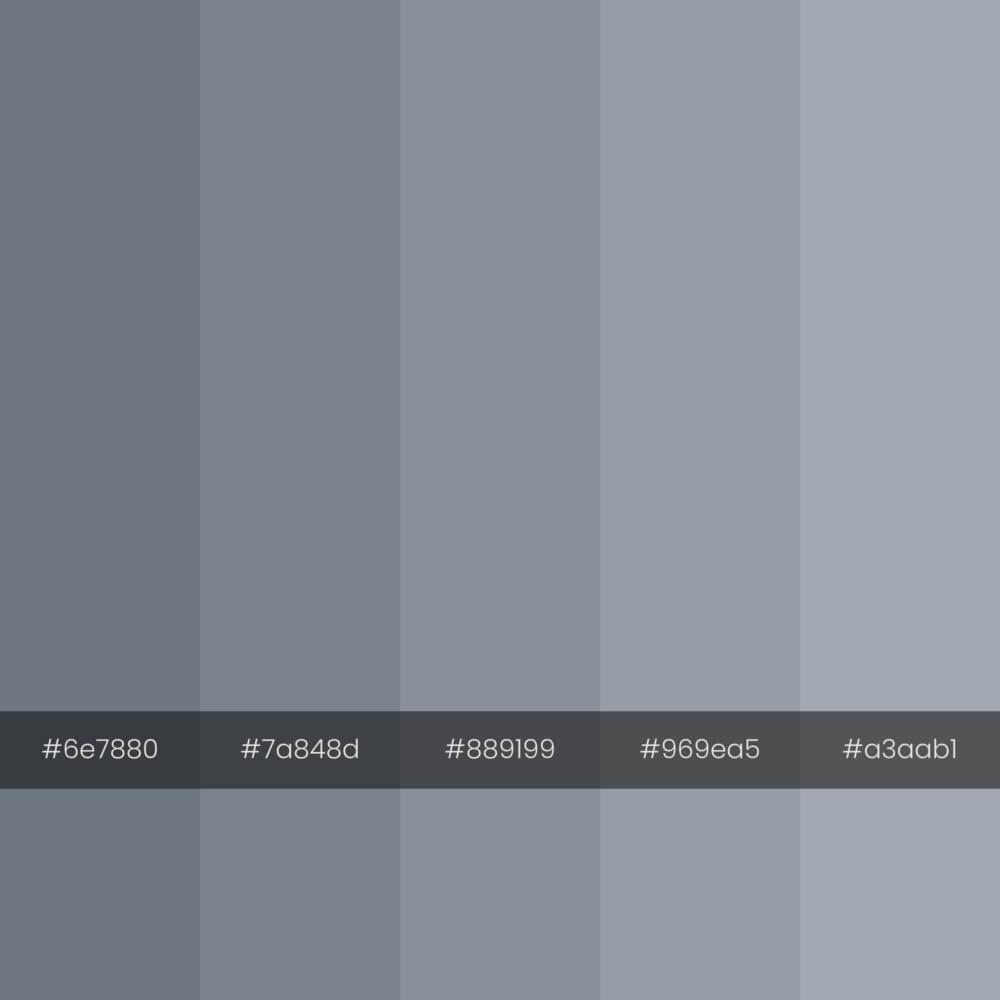 color-palette-2000-2000-bims-monochrome