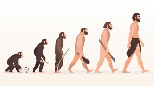 jasonbgraham-evolution