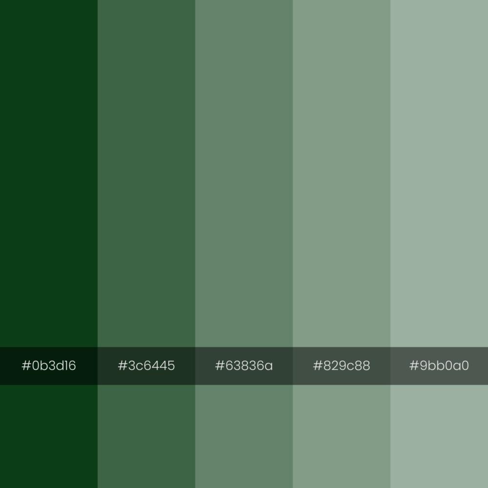 color-palette-envy-monochrome